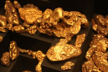 Gold Nuggets- Los Angeles County Museum