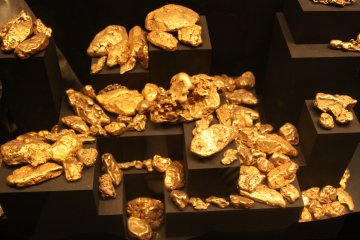 Los Angeles County Natural History Museum Gold